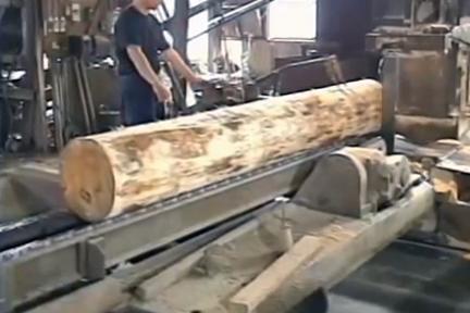 spruce log
