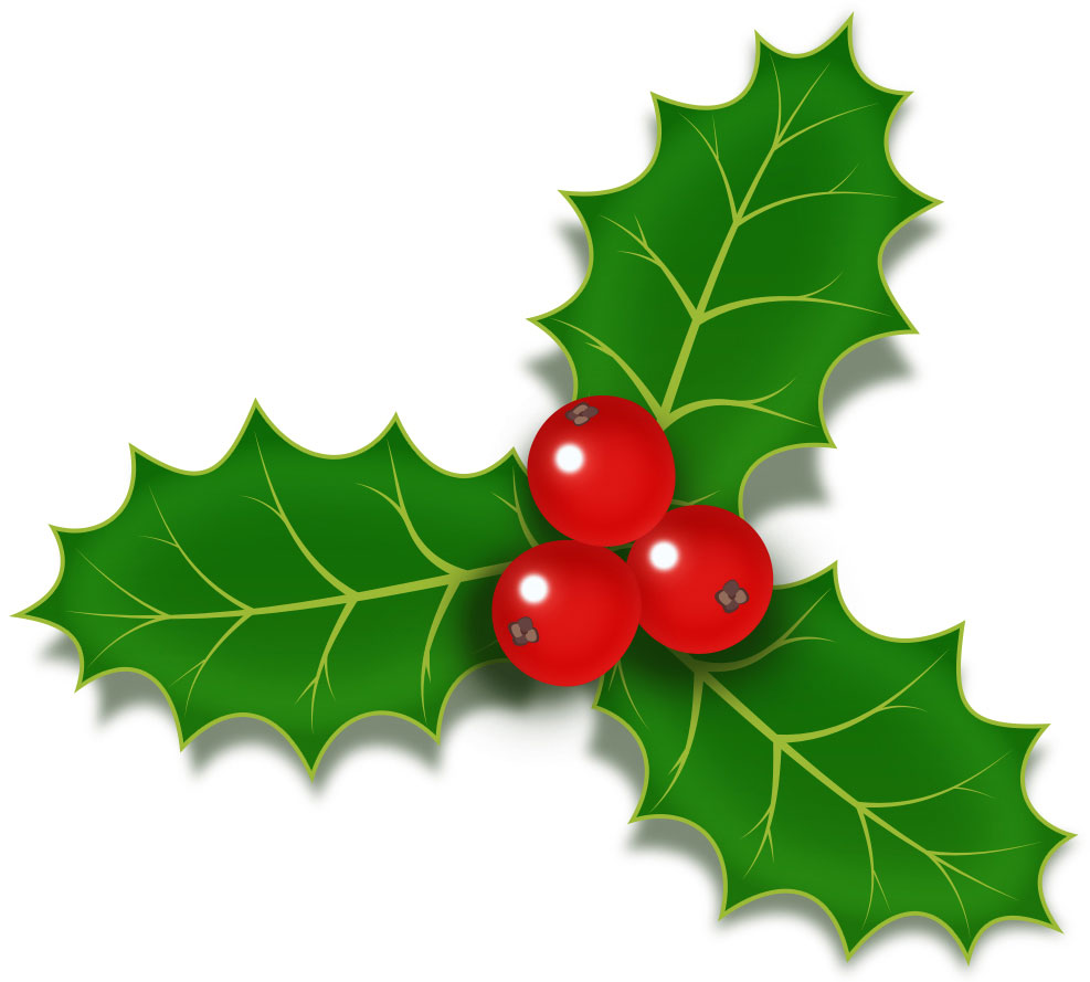holly-berries-icon-psd copy copy