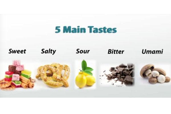 The Taste Test | Zojirushi Blog